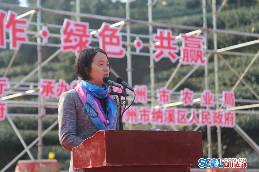 中国特早茶之乡·四川第四届茶叶开采活动开幕