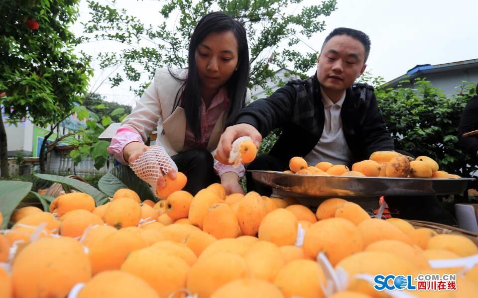 天仙镇:特色产业结合乡村旅游 走出一条致富路