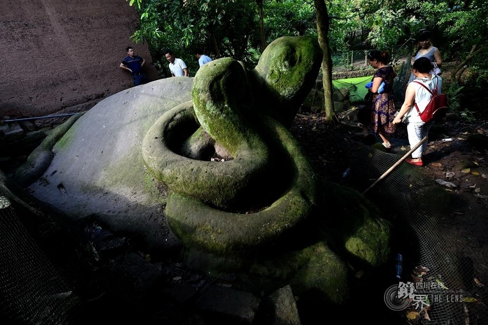 """长江边古神臂城遗址的""""灵龟盘蛇"""",这是目前发现最大的龟蛇石,由整块石头雕琢而成。"""